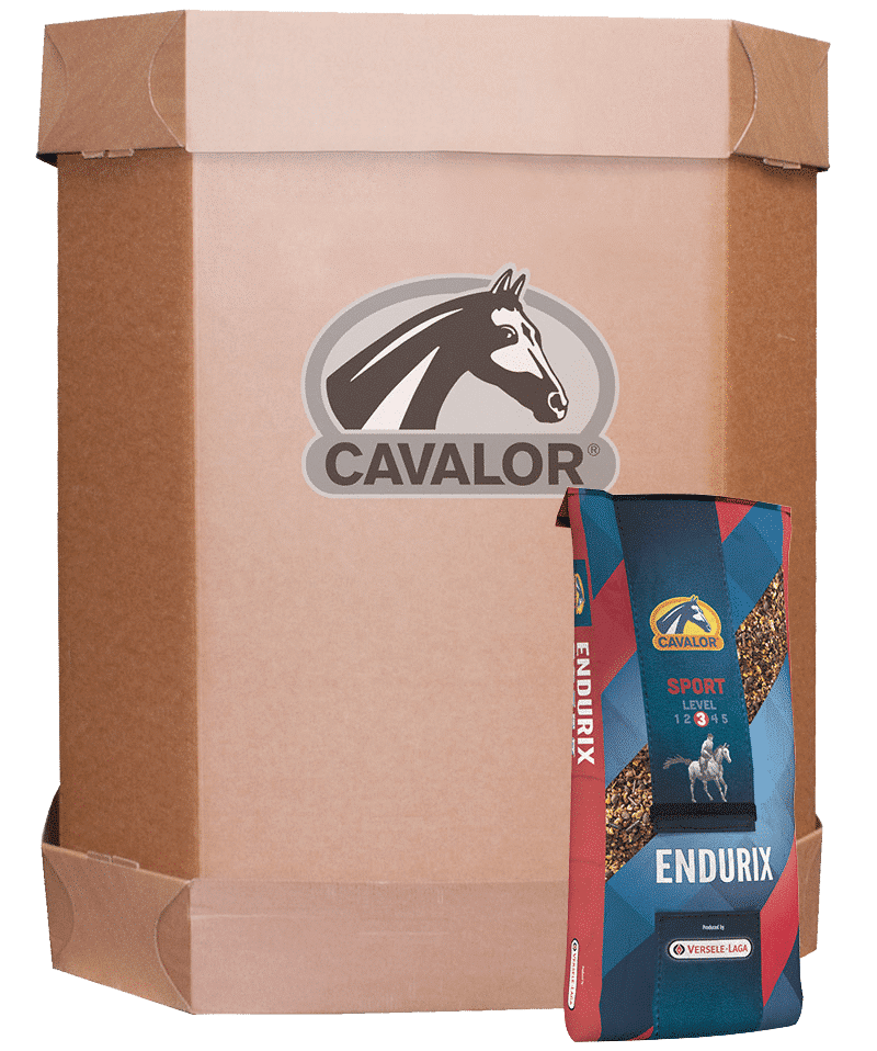 Cavalor Endurix XL BOX