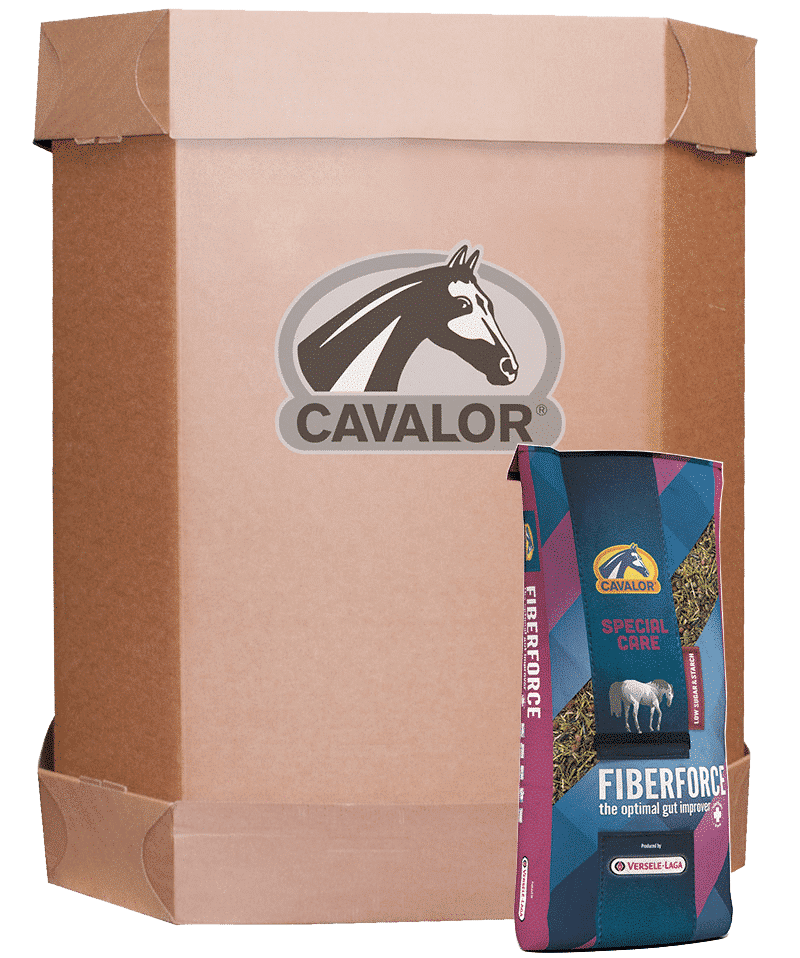 Cavalor FiberForce XL BOX